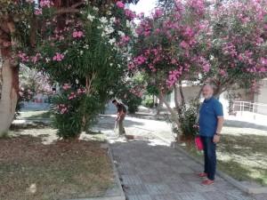 c_jardines