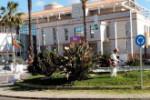 Jardinería267